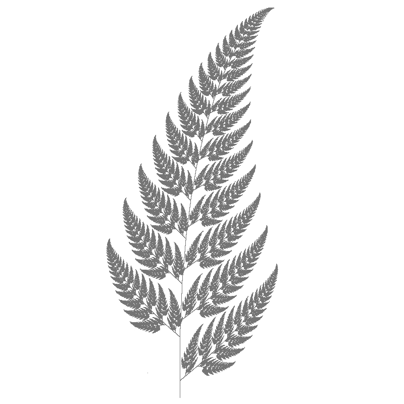 Fern Leaf Drawings Fer...